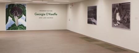 The entrance to the exhibition Modern Nature: Georgia O'Keeffe and Lake George