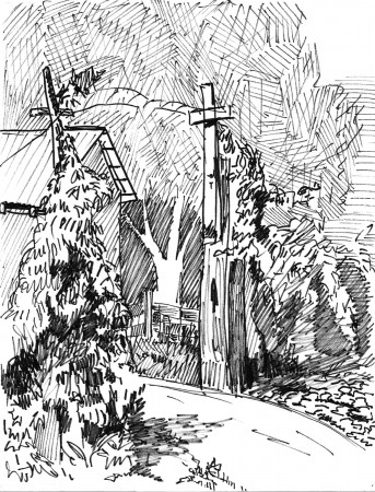 A pen and ink drawing of a gate and a garden